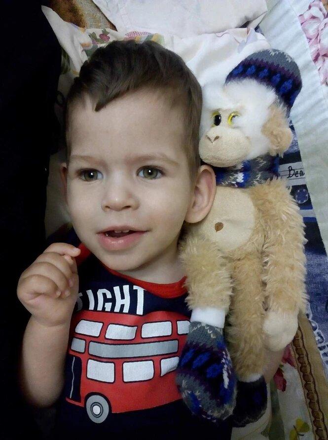 Гук Андрей, 3 года, сбор завершён